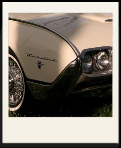 Polaroid Thunderbird