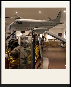 Polaroid espace muséeographique